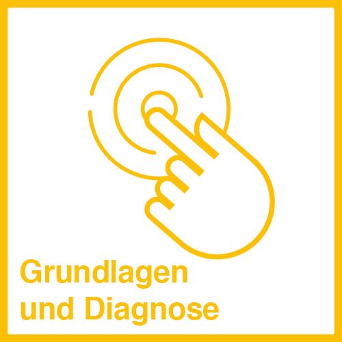 Grundlagen und Diagnosen